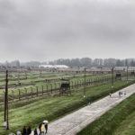 Auschwitz wycieczka wynajem samochodu